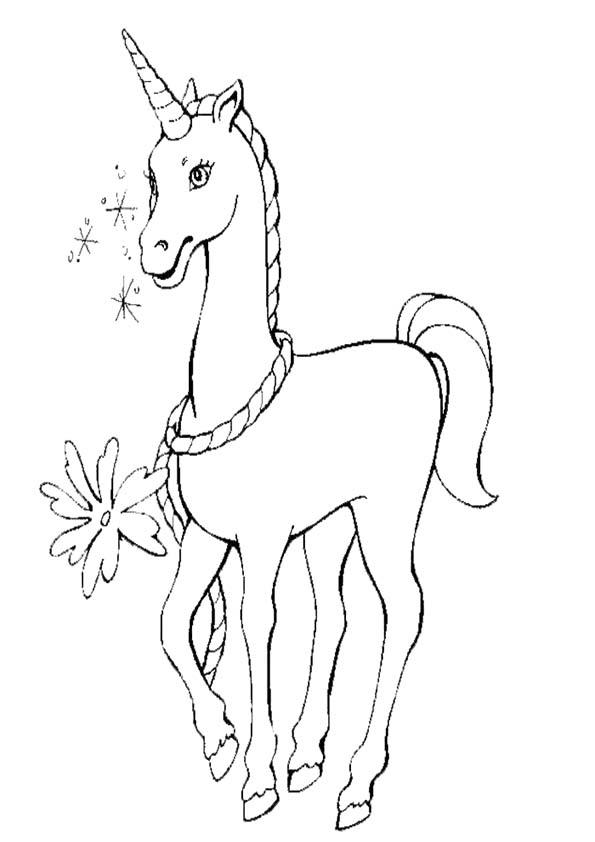 Pferde 28