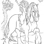Pferde-50