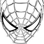 Spiderman-31