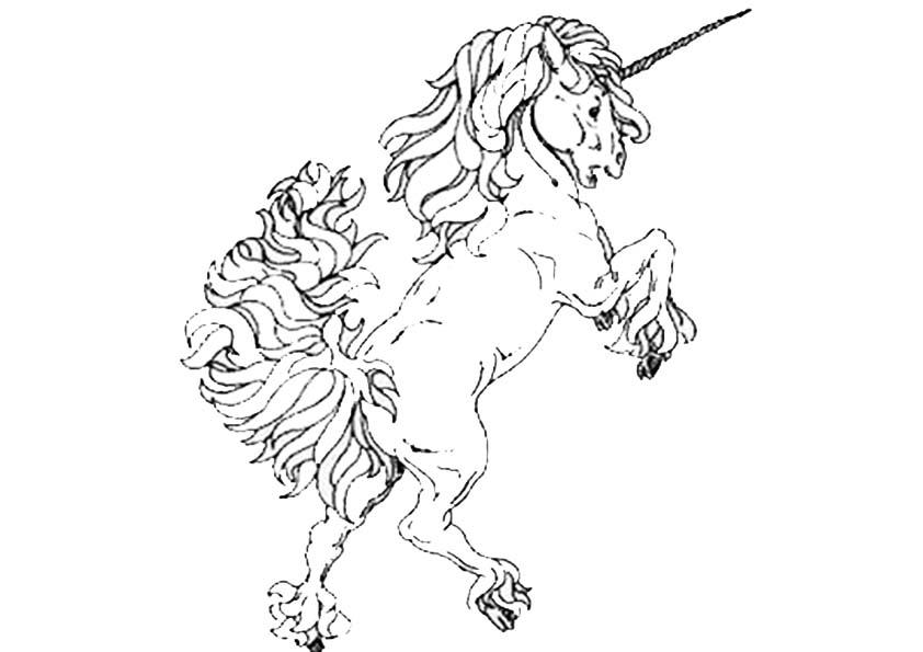 Malvorlagen -Ausmalbilder- pferde-47