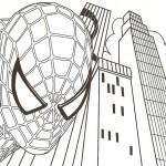 Spiderman-25