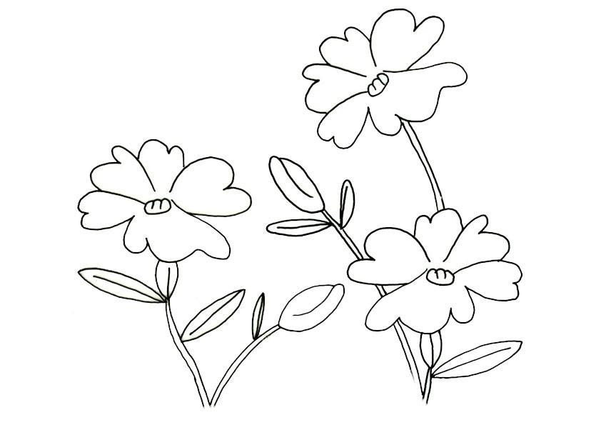 Ausmalbilder-Blumen-1