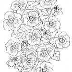 Blumen-13