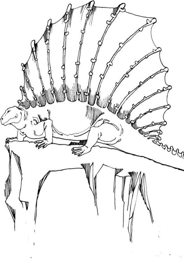 Ausmalbilder Dinosaurier 3