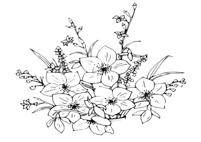 Ausmalbilder Blumen-24