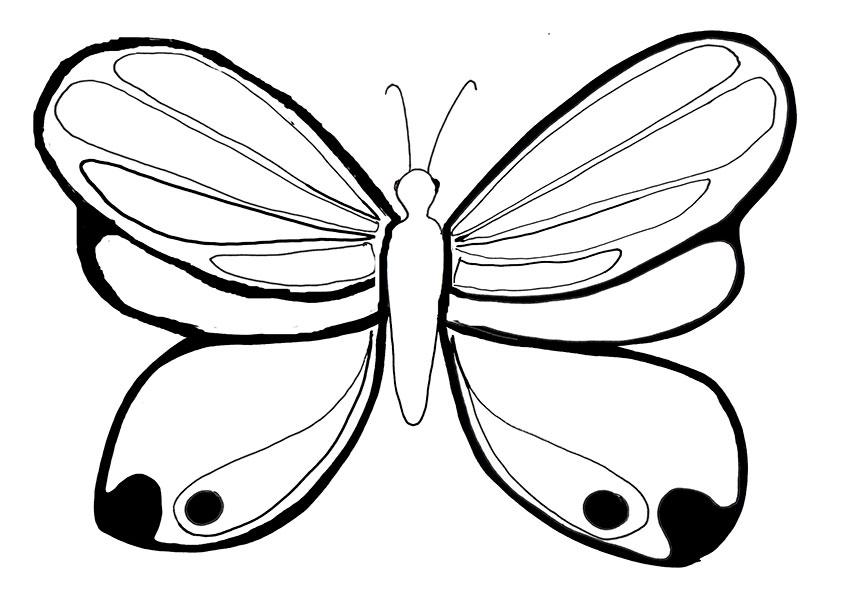 Ausmalbilder Schmetterling-13