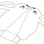 Ausschneiden-ostern-4