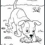 Hunde-13