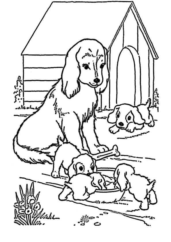 Malvorlagen Für Hunde | My blog