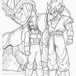 Dragon ball-12