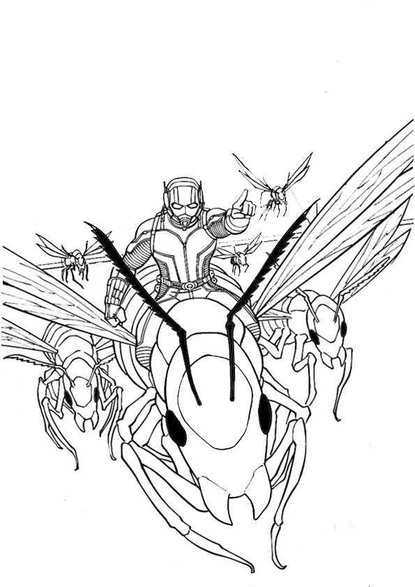 ausmalbilder  ant-man-13
