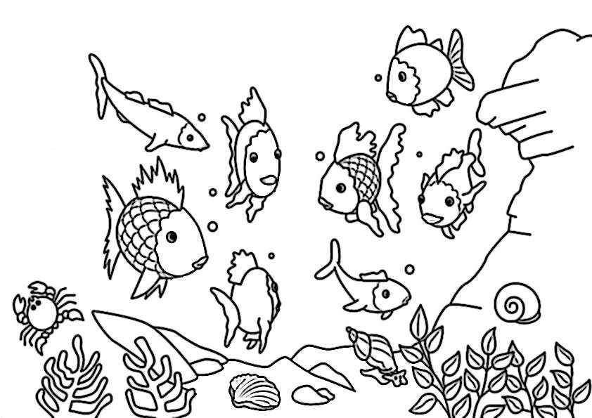 ausmalbilder fische-5
