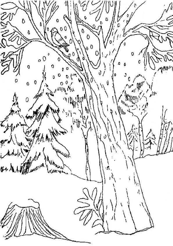 ausmalbilder winter-2