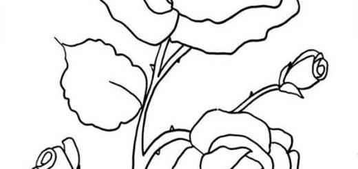 ausmalbilder blumen-10