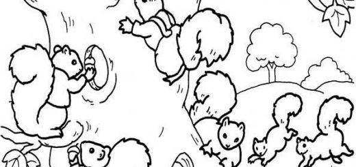 ausmalbilder eichhörnchen-4