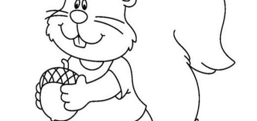 ausmalbilder eichhörnchen-15