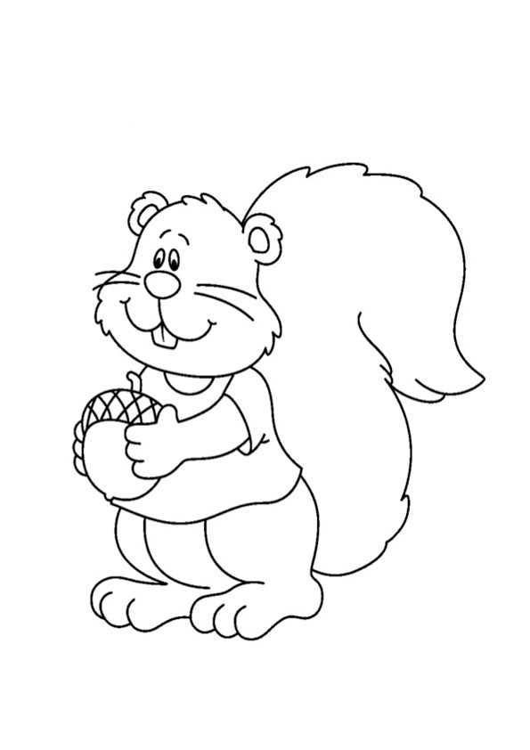 eichhörnchen15  ausmalbilder malvorlagen